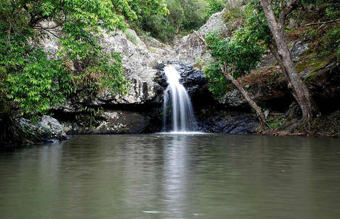 Kondallila Falls National Park Flaxton Queensland